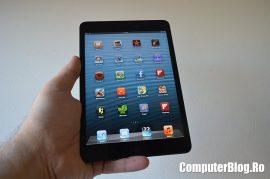 iPad Mini 0012