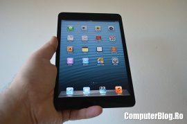 iPad Mini 0013